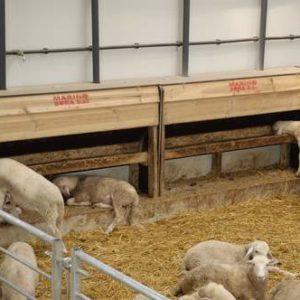 Tolva de pasillo para corderos y pienso