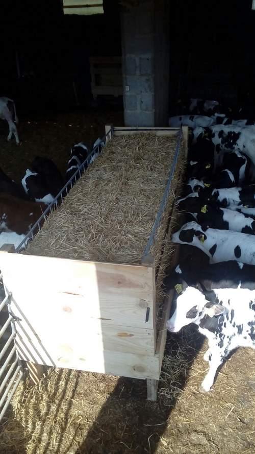 comedero para vacas con rejilla corredera
