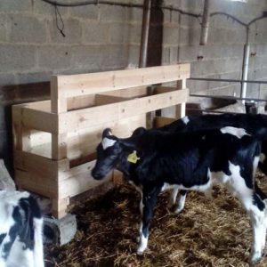 comedero-para-vacas-para-pasillo