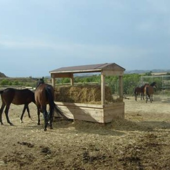 comedero-para-caballos (2)