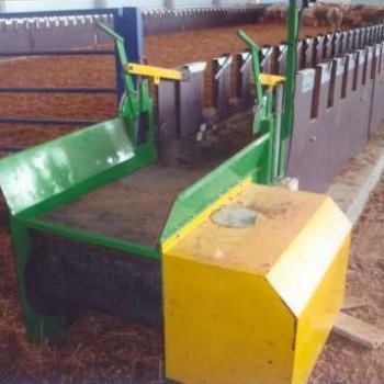 Cinta transportadora amarre autoblocante para ganado ovino